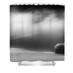 Shower Curtain featuring the photograph Pillow Soft by Dan Jurak