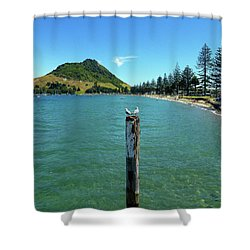 Pilot Bay Beach 1 - Mt Maunganui Tauranga New Zealand Shower Curtain