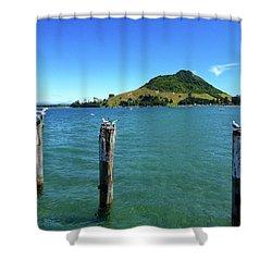 Pilot Bay Beach 3 - Mt Maunganui Tauranga New Zealand Shower Curtain