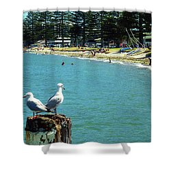 Pilot Bay Beach 4 - Mount Maunganui Tauranga New Zealand Shower Curtain