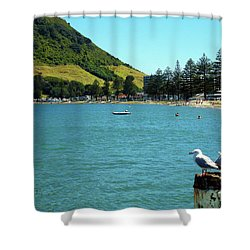Pilot Bay Beach 5 - Mt Maunganui Tauranga New Zealand Shower Curtain