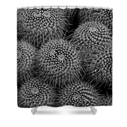 Pincushion Cactus In Black And White Shower Curtain