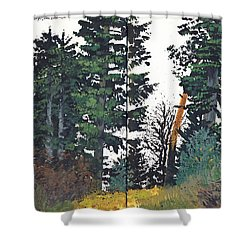 Pine And Fir Tree Forest Shower Curtain