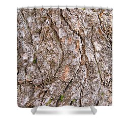 Shower Curtain featuring the photograph Pine Bark Abstract by Christina Rollo