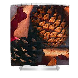 Pine Cones And Leaves Shower Curtain by Nancy Mueller
