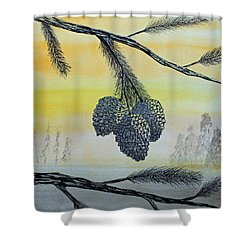 Pine Cones Shower Curtain by Jack G  Brauer