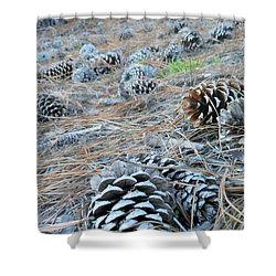Shower Curtain featuring the photograph Pine Cones by Kay Gilley