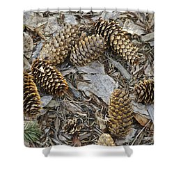 Pine Cones Shower Curtain by Michael Peychich