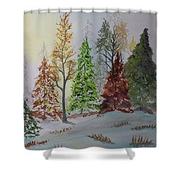 Pine Cove Shower Curtain by Jack G Brauer