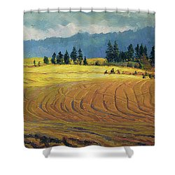 Shower Curtain featuring the painting Pine Grove by Steve Henderson