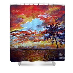 Shower Curtain featuring the painting Pine Island Sunset by Lou Ann Bagnall
