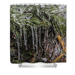 Pine Needlecicles Shower Curtain by Barbara Bowen