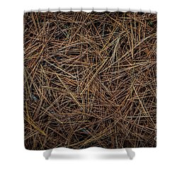 Shower Curtain featuring the photograph Pine Needles On Forest Floor by Elena Elisseeva