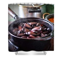 Pine Nut For Breakfast In Cunha City Shower Curtain