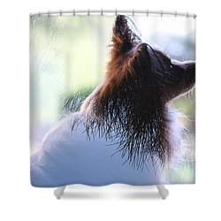 Pine Pap Shower Curtain