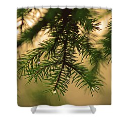 Shower Curtain featuring the photograph Pine by Robert Geary