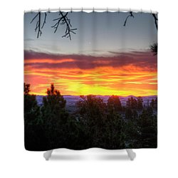 Pine Sunrise Shower Curtain