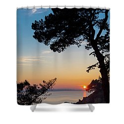 Shower Curtain featuring the photograph Pine Tree by Delphimages Photo Creations