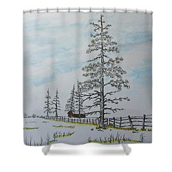 Pine Tree Gate Shower Curtain by Jack G  Brauer