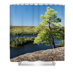 Shower Curtain featuring the photograph Pine Tree With A View by Elena Elisseeva