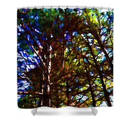 Pine Trees In Abstract 1 Shower Curtain