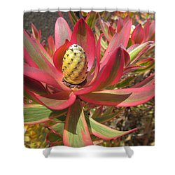 Pineapple King Flower Shower Curtain