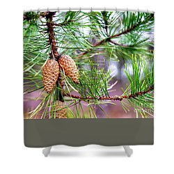 Pinecones Shower Curtain by John Rizzuto