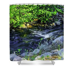 Pinecones Sage And Slow Moving Water Shower Curtain