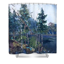 Shower Curtain featuring the painting Pinelake  by Helen Harris