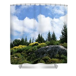 Pines At The Top Shower Curtain by Lois Lepisto