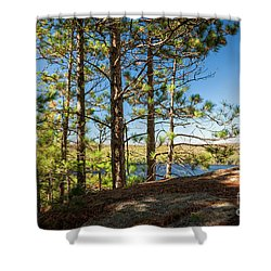 Shower Curtain featuring the photograph Pines On Sunny Cliff by Elena Elisseeva