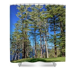 Shower Curtain featuring the photograph Pines by Werner Padarin