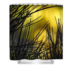 Pineview Shower Curtain