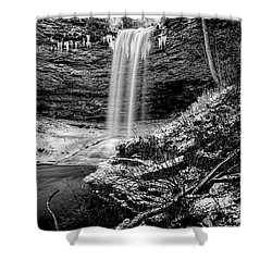 Piney Falls In Black And White Shower Curtain