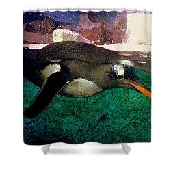 Pinguin At Denmark Shower Curtain