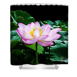 Pink And Green Floral Garden Ballet 11u Lotus Bloom Shower Curtain