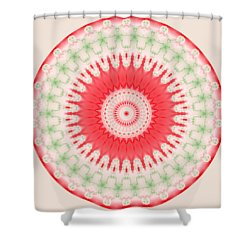 Pink And Green Mandala Fractal 001 Shower Curtain