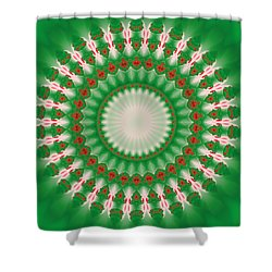 Pink And Green Mandala Fractal 005 Shower Curtain