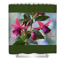 Pink And Purple Fuchsia Shower Curtain