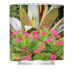 Pink And Spiky Shower Curtain
