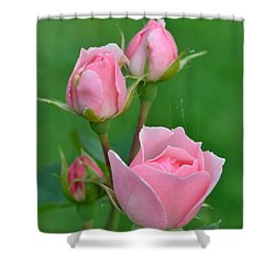 Pink And The Buds Shower Curtain