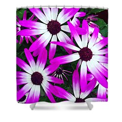 Pink And White Flowers Shower Curtain by Vizual Studio