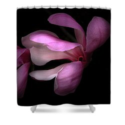 Pink And White Magnolia In Silhouette Shower Curtain