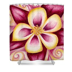 Pink And Yellow Columbine Flower Drawing Shower Curtain