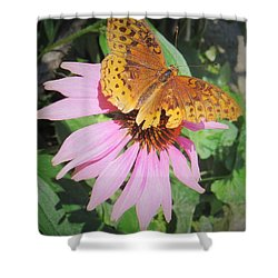 Pink And Yellow Shower Curtain by Jeanette Oberholtzer