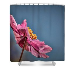 Shower Curtain featuring the photograph Pink And Yellow Profile #h8 by Leif Sohlman