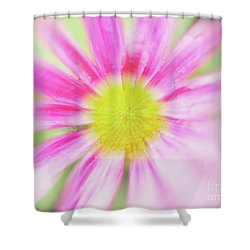 Shower Curtain featuring the photograph Pink Aster Flower With Raindrops Abstract by Nick Biemans
