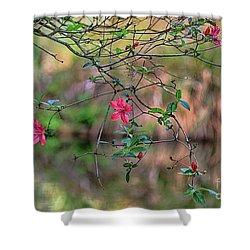 Shower Curtain featuring the photograph Pink Azalea Dream by Deborah Benoit