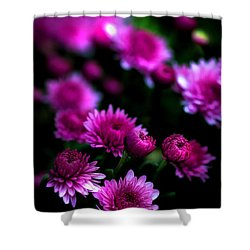 Pink Beauty Shower Curtain by Cherie Duran