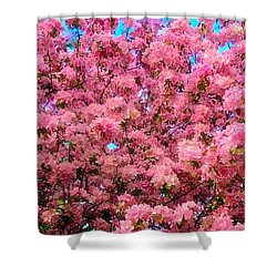 Pink Blossoms Of Spring Shower Curtain